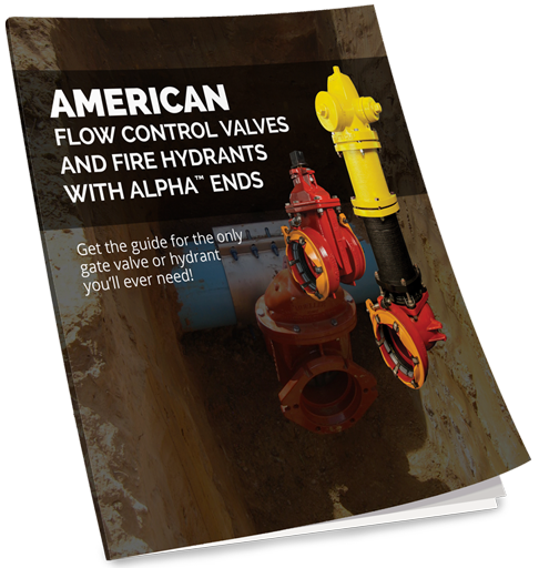 Gate Valve Alpha Book Cover