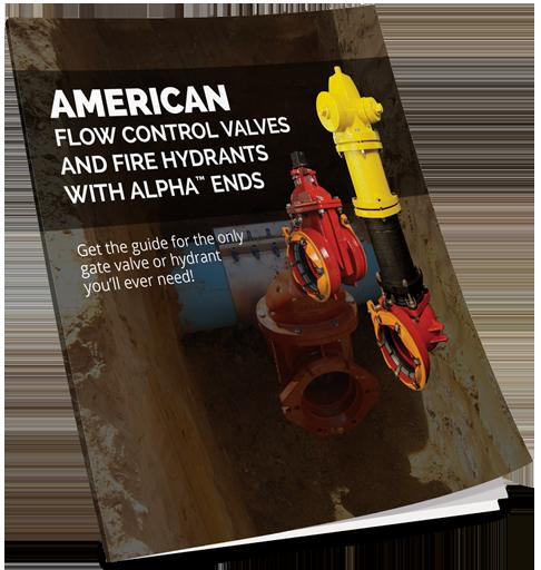 Gate Valve Alpha Book Cover